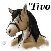 altivo: 'Tivo as a plush toy (Miktar's plushie)